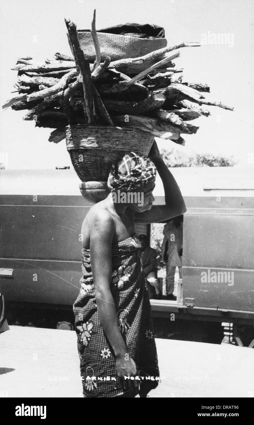 Guari wood carrier, Northern Nigeria, Africa - Stock Image