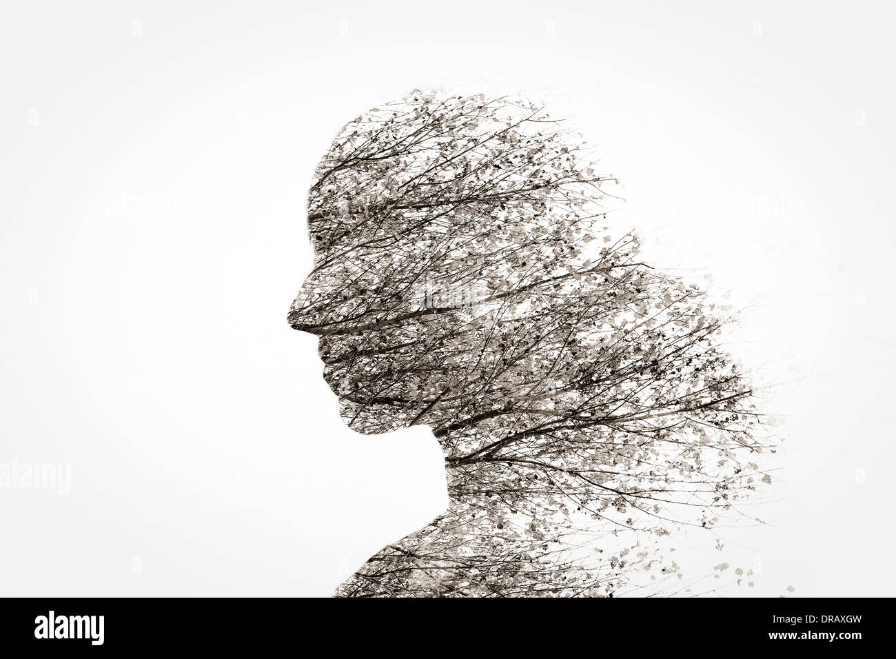 In-camera double exposure of woman and trees. - Stock Image