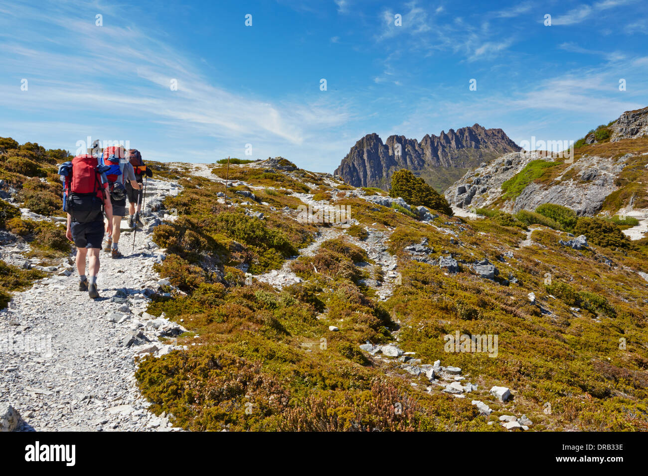 Hikers on the Overland Trail in Cradle Mountain National Park, Tasmania - Stock Image
