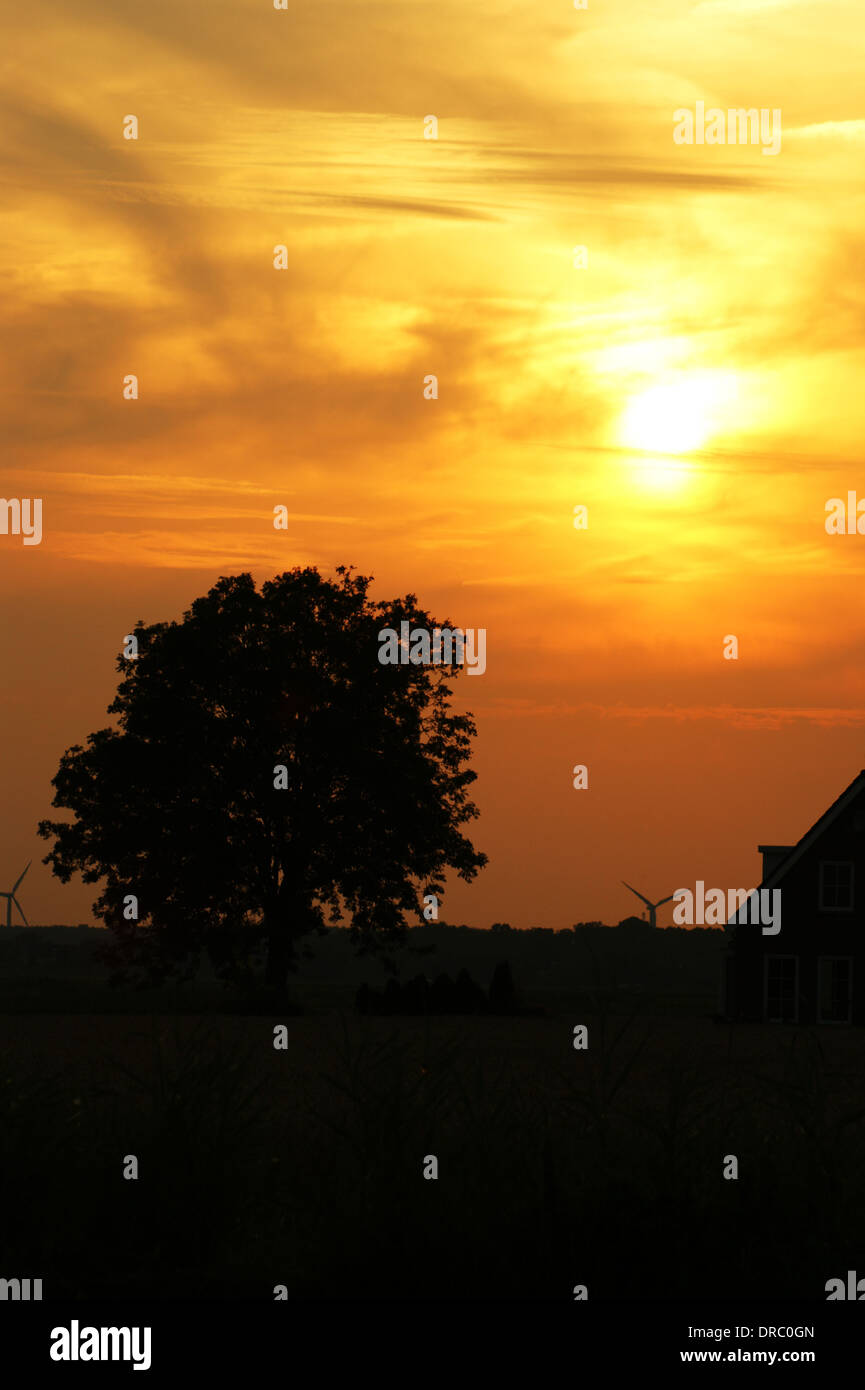 Slept by sun - Stock Image