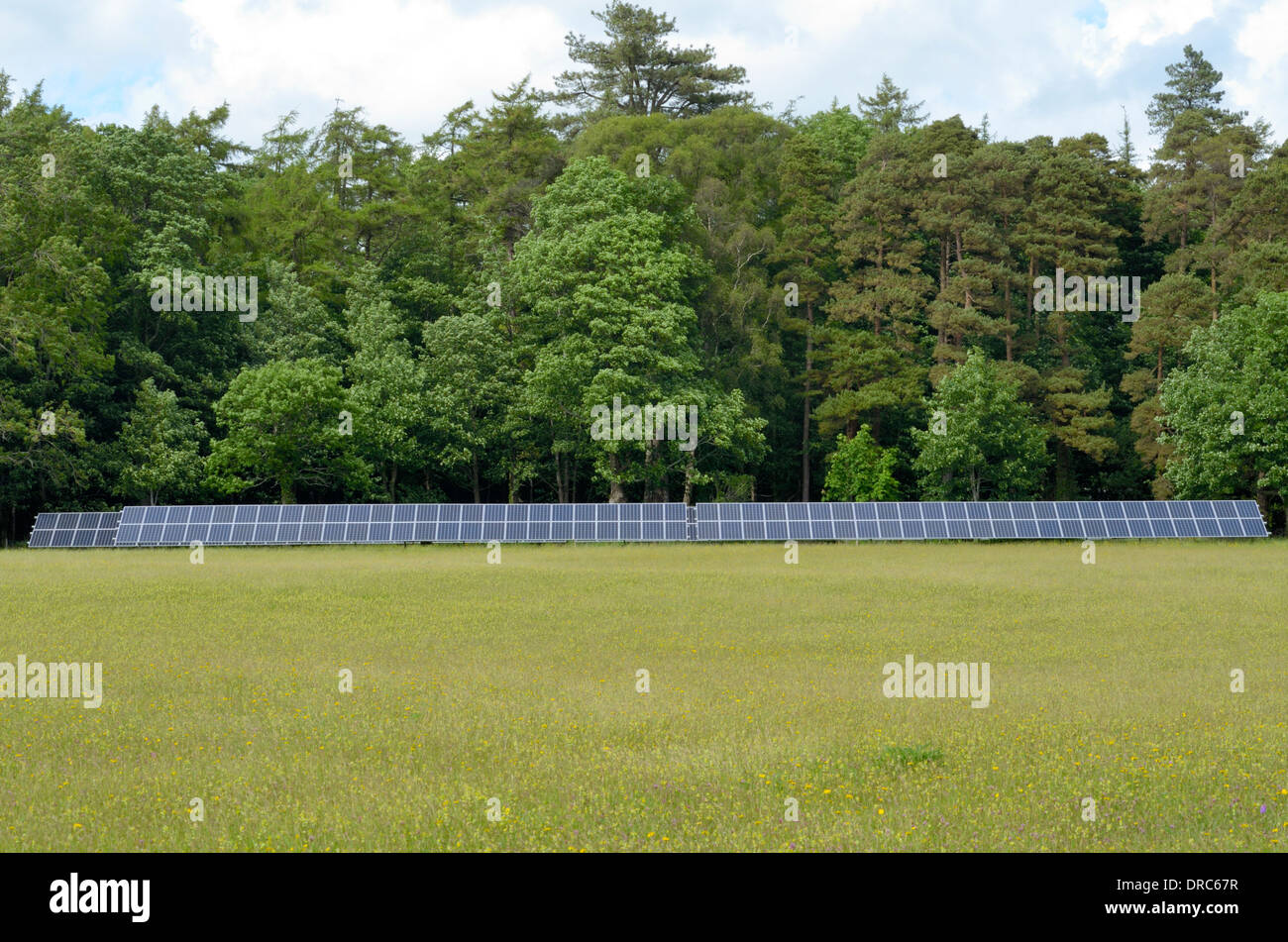 Solar Panels in a Meadow - Stock Image