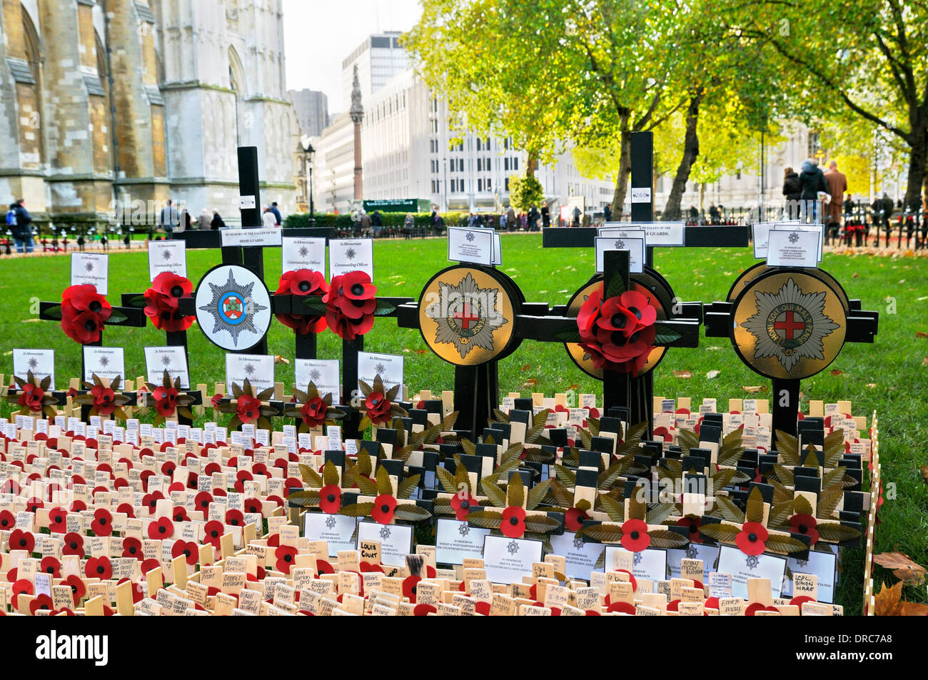 Crosses and poppies in the Field of Remembrance at Westminster Abbey, London, England, UK - Stock Image