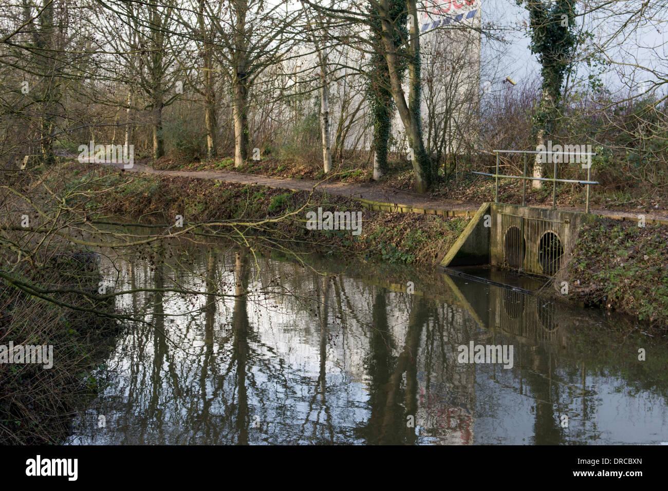 Slacker on the River Waveney, Diss, Norfolk, England - Stock Image