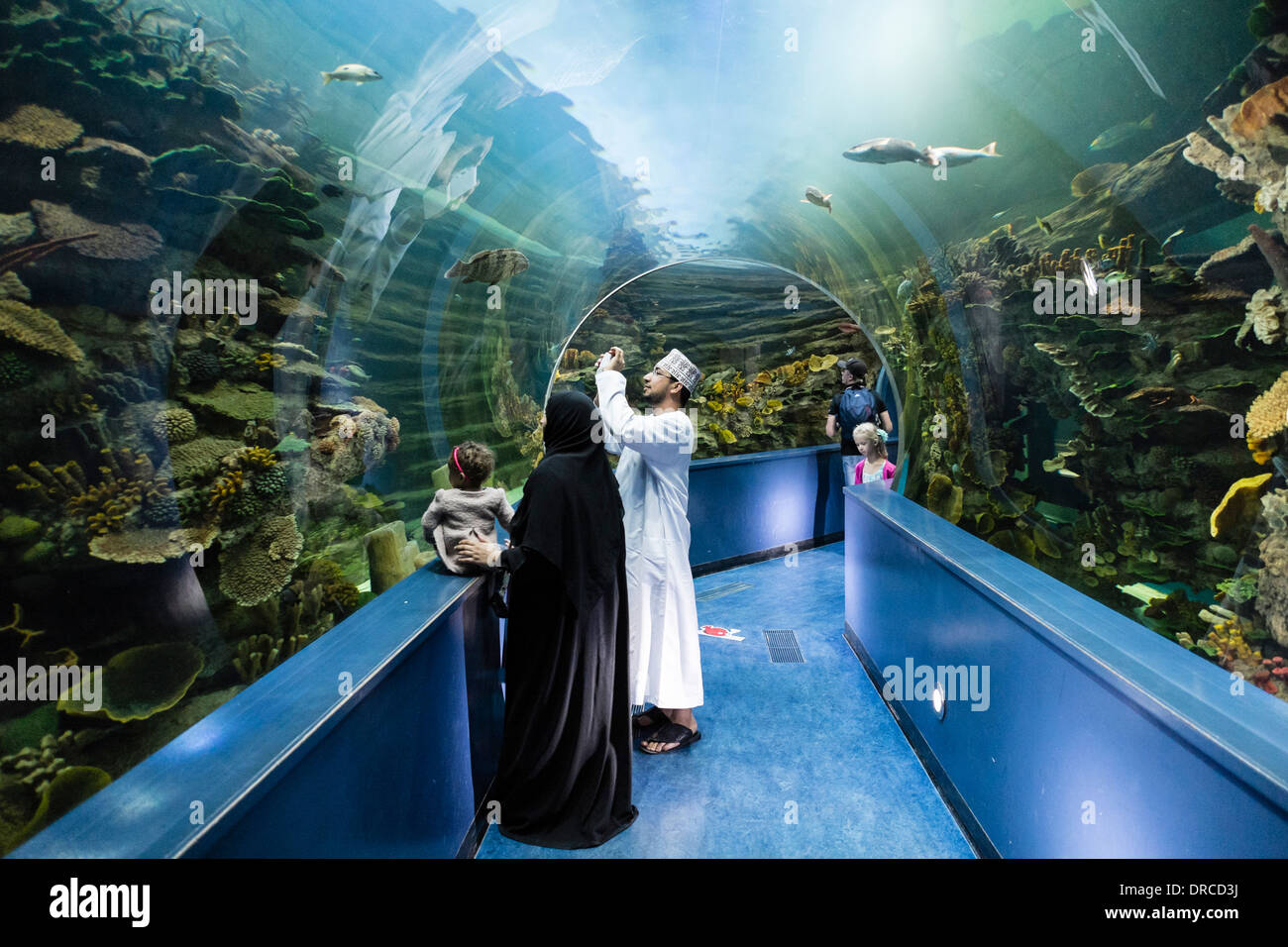Aquarium in Sharjah in United Arab Emirates - Stock Image