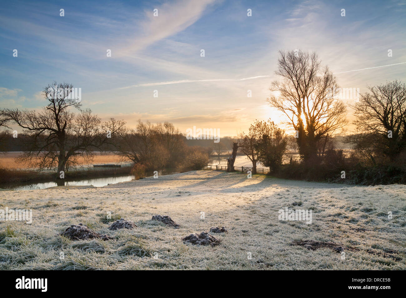 Frosty morning Grantchester meadows, Cambridge, UK - Stock Image