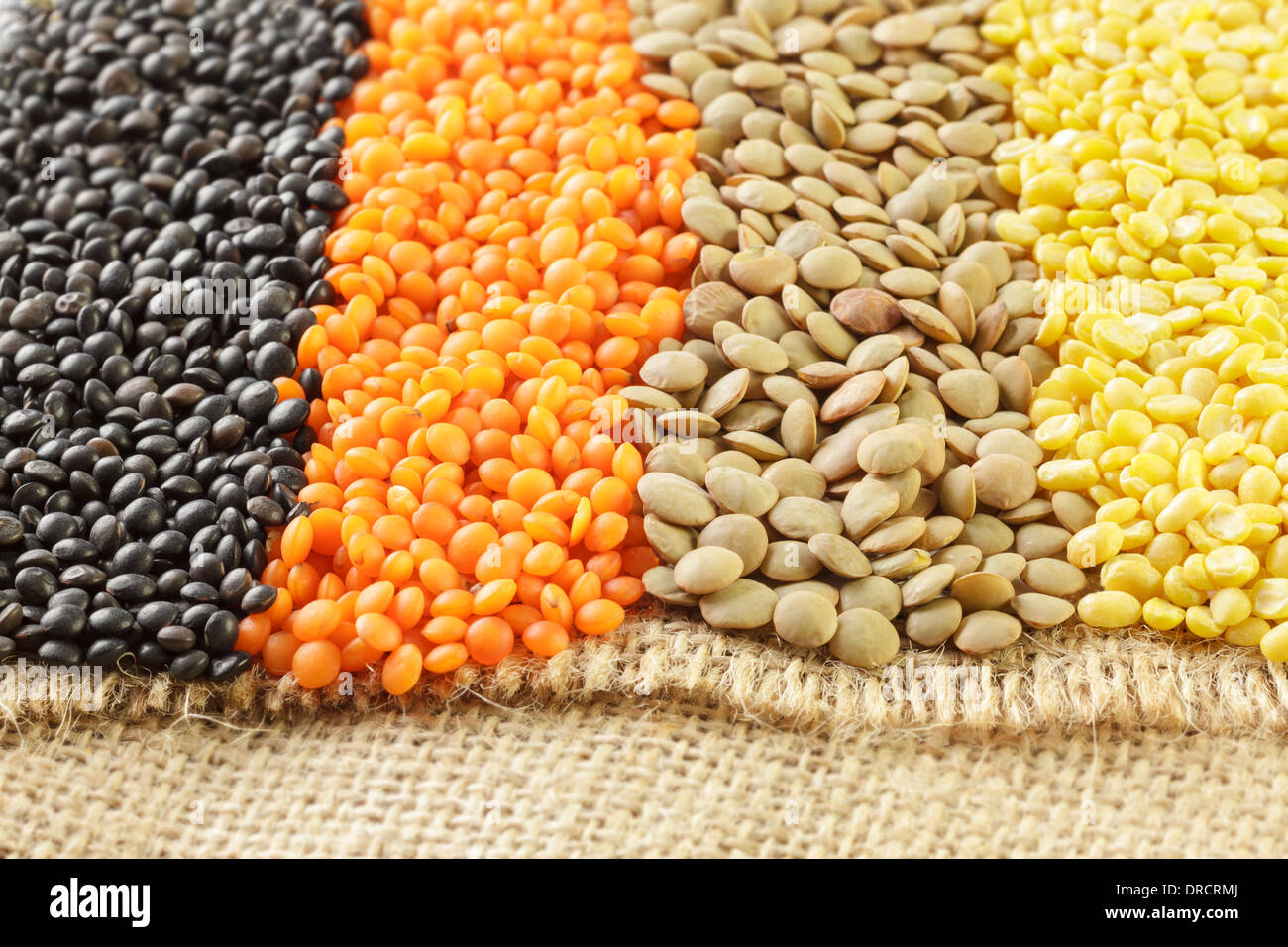Varied types of Lentils - Stock Image