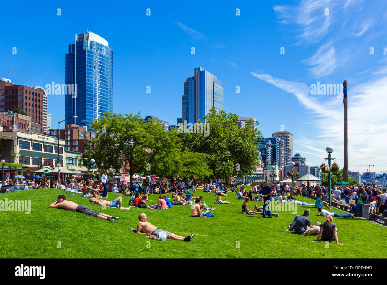 People sunbathing in Victor Steinbrueck Park in front of the downtown skyline, Seattle, Washington, USA - Stock Image