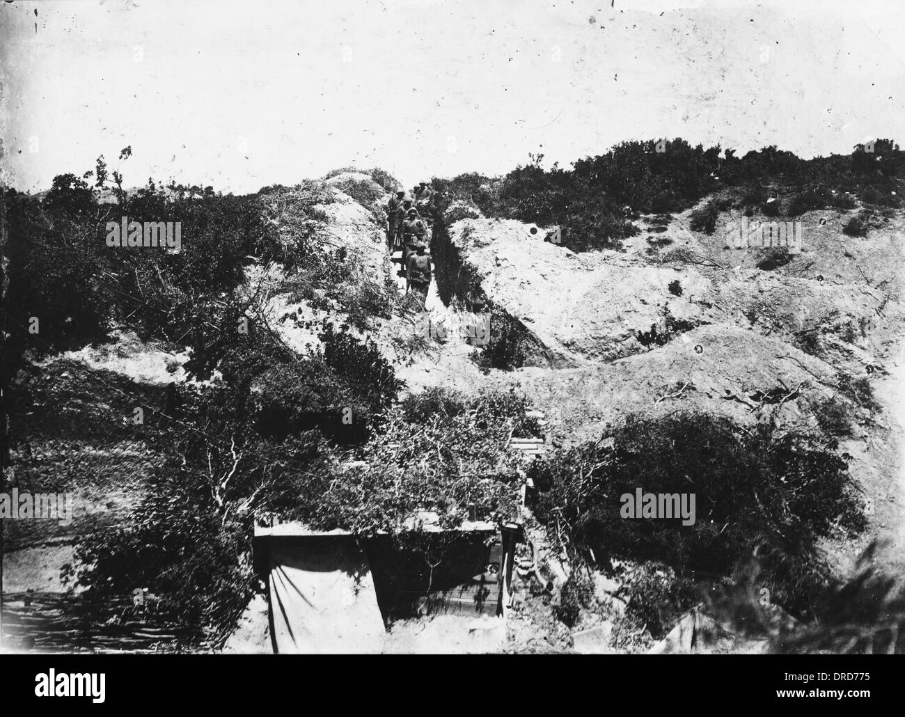 Gallipoli WWI - Stock Image