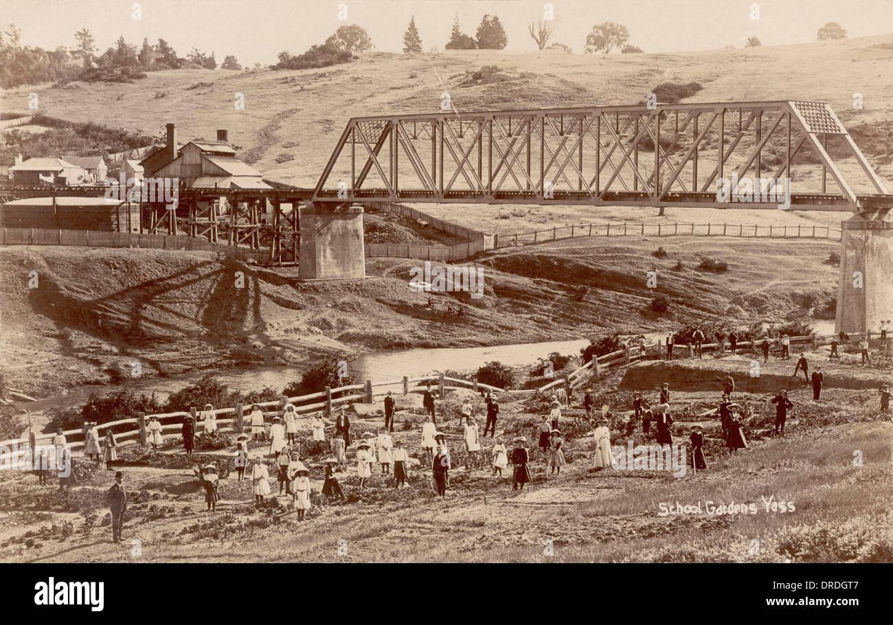 Yass c. 1909 - Stock Image