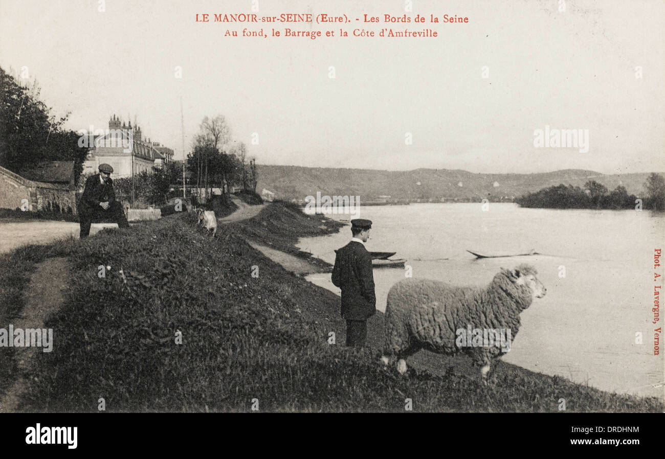 Man & Sheep stare across the Seine - Stock Image