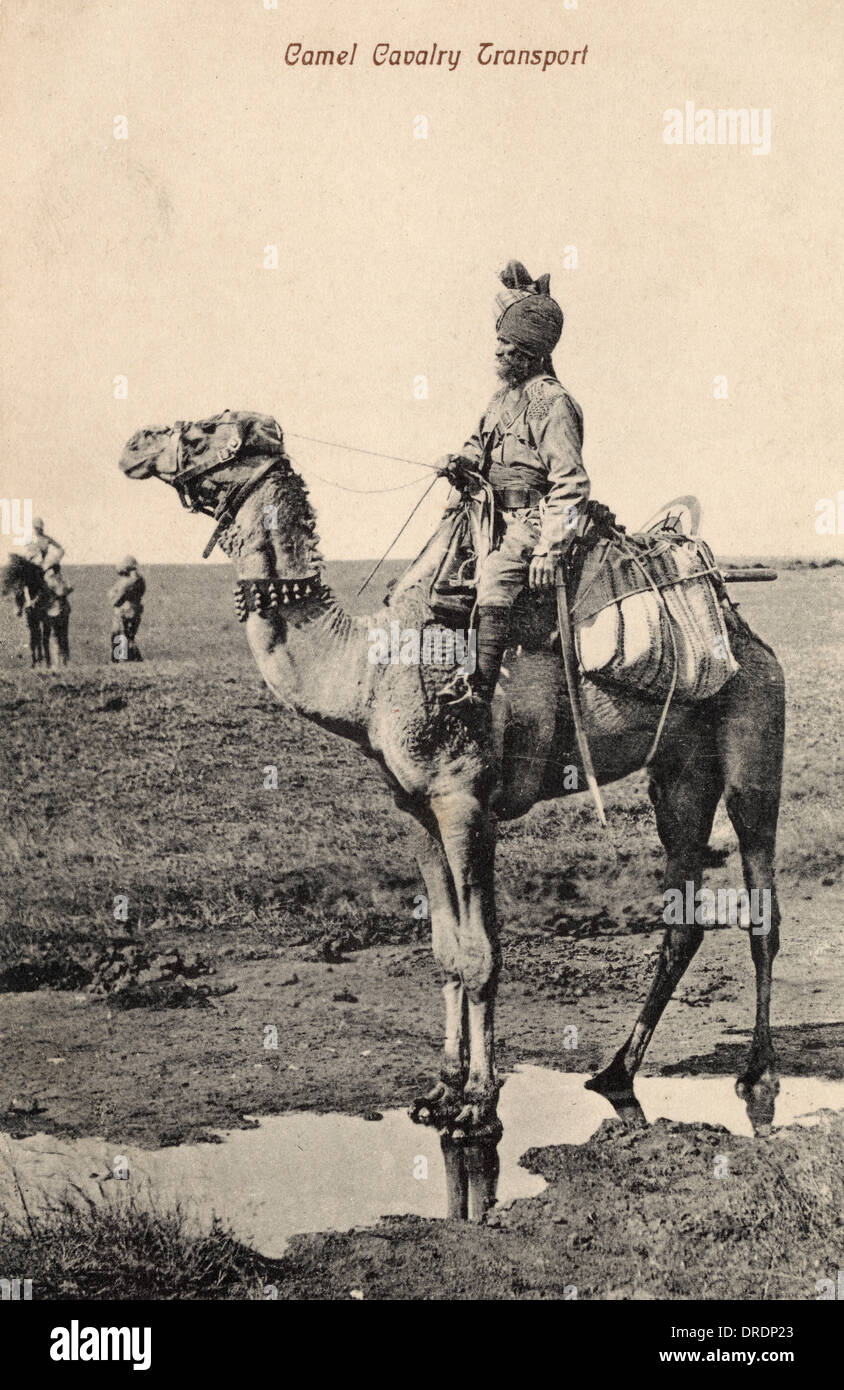 Indian Camel Cavalry - Stock Image