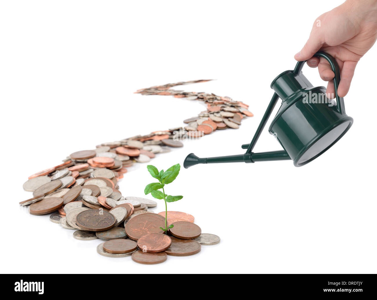 Caoncept of making you money grow, isolated on white - Stock Image