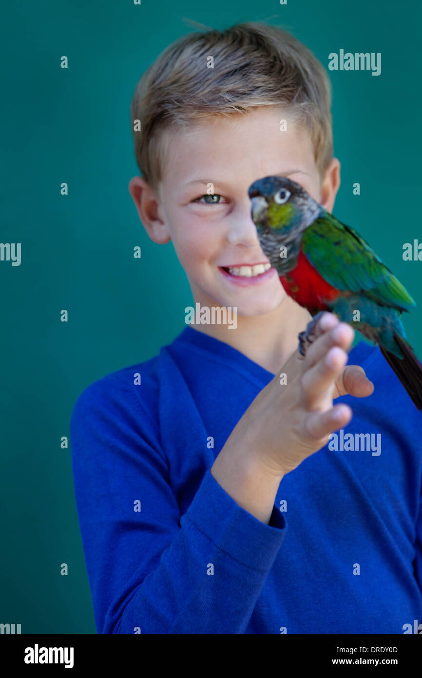 Young boy with pet parrot - Stock Image