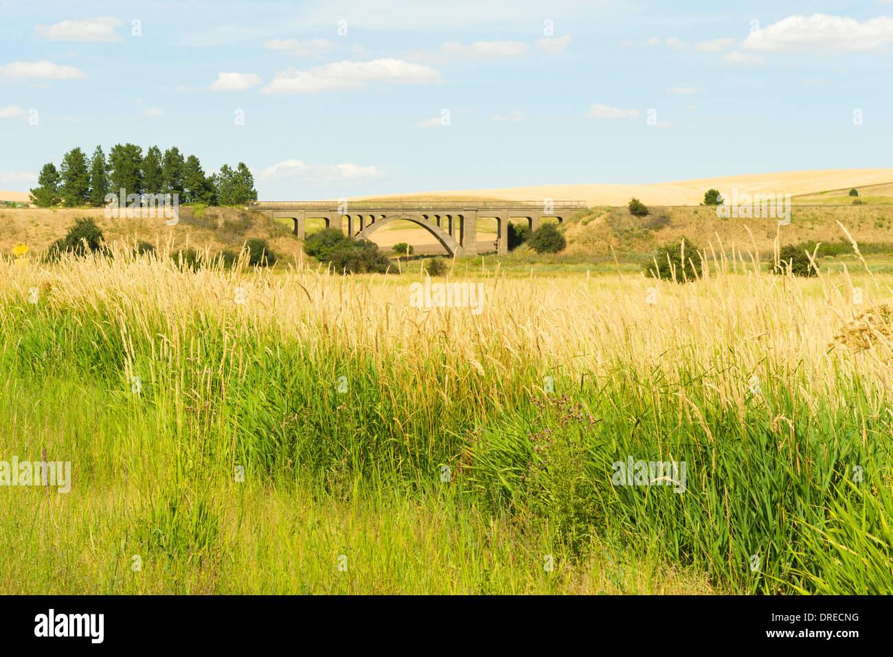 Eastern span of Rosalia Railroad Bridge (1915), near Rosalia, Washington, USA. - Stock Image