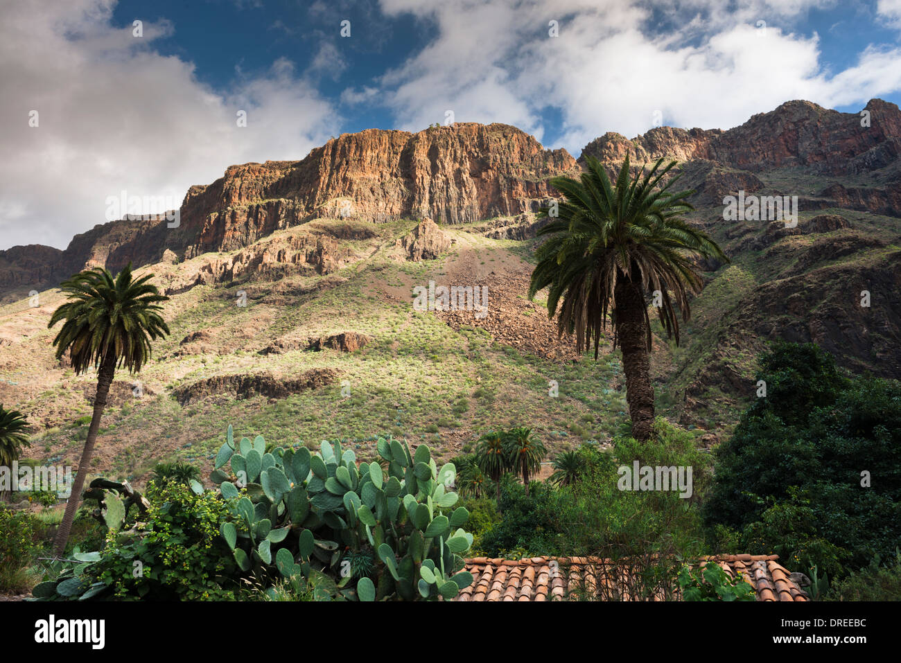 The village of Arteara in the steep-sided Barranco de Fataga, walled by a thick sequence of trachyte and phonolite Stock Photo