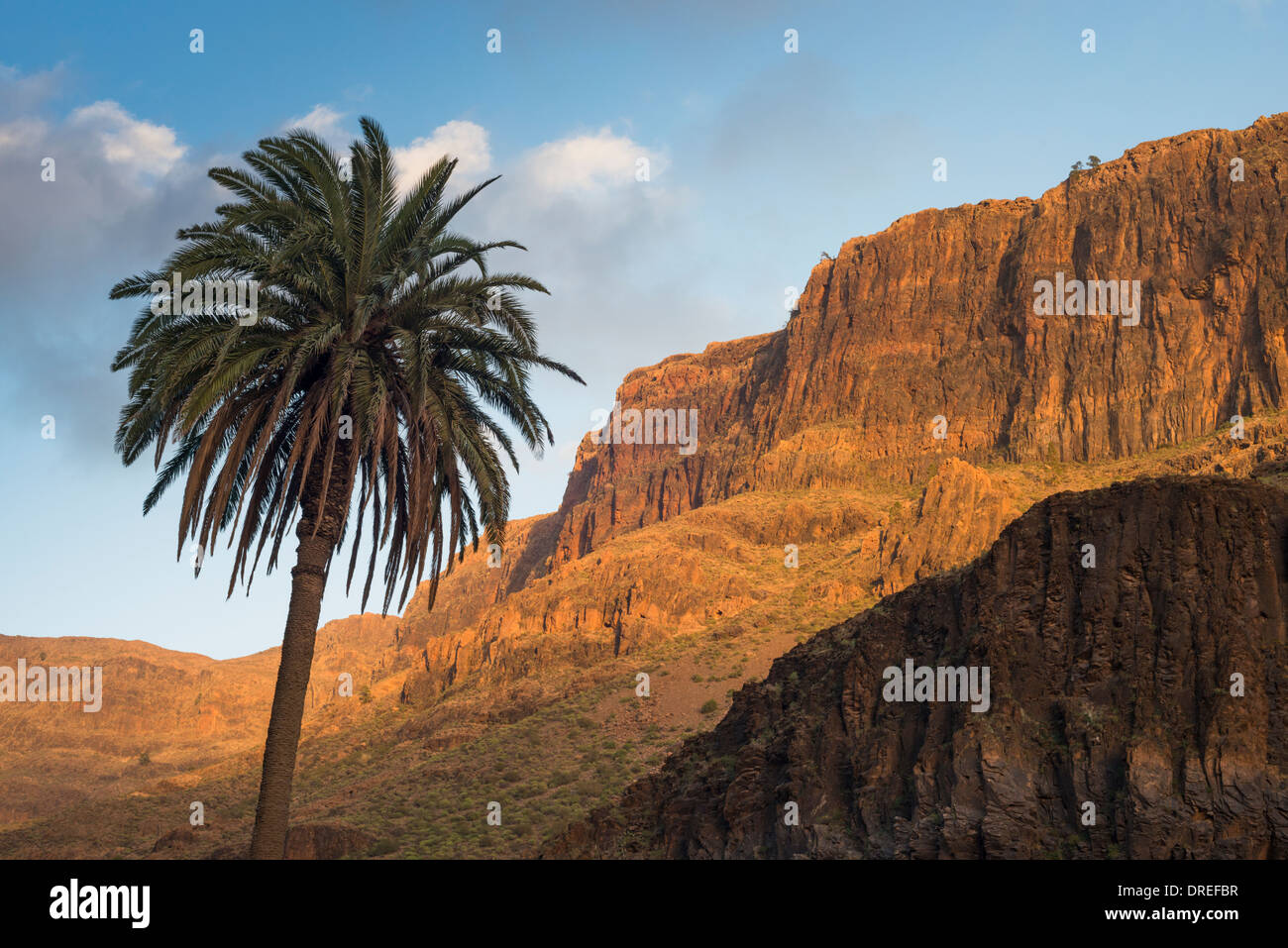 Thick sequence of trachyte and phonolite lava flows forming the east wall of Barranco de Fataga, Arteara, Gran Canaria Stock Photo