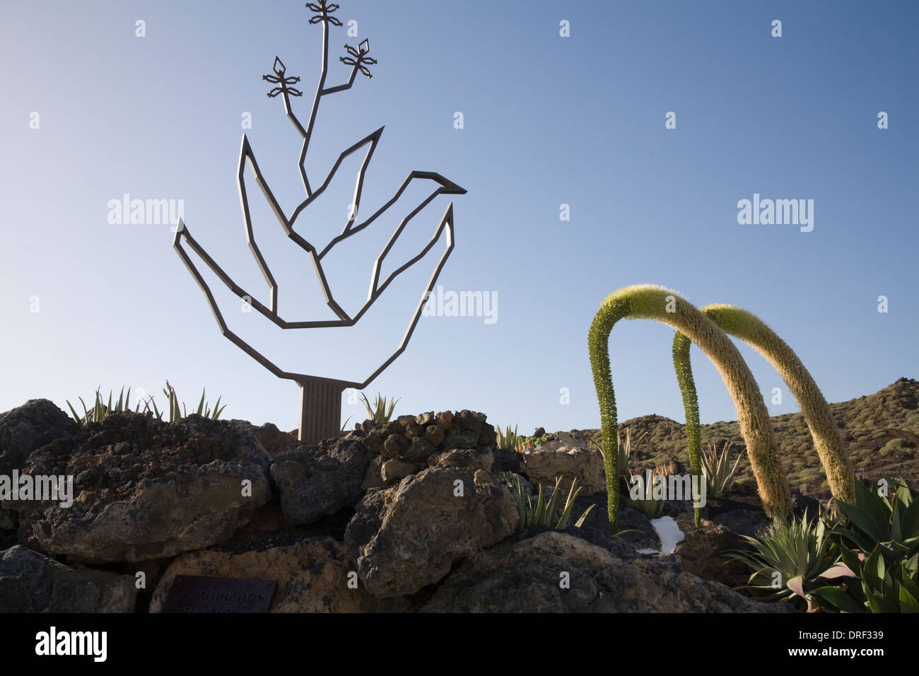 Punta Mujeres Lanzarote Canary Islands Metal Sign Outside Aloe Vera House