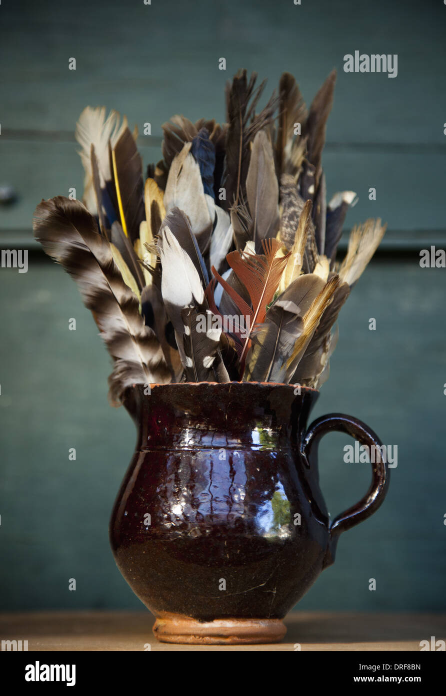 Maryland USA collection of bird feathers in brown pottery jug - Stock Image