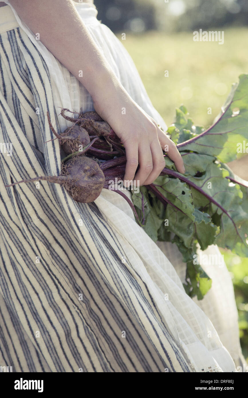 Maryland USA girl in skirt beets fresh vegetablesfield of crops Stock Photo