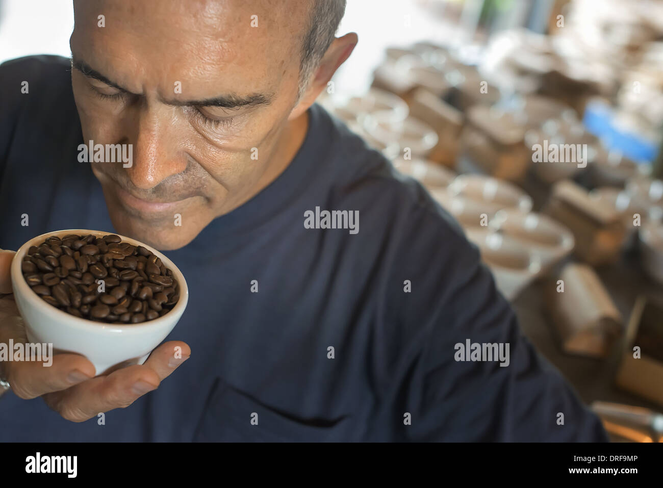 New York state USA sampling coffee processing shed blending grounds - Stock Image