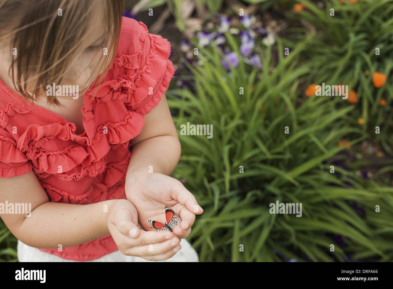 Utah USA young girl looking at colourful butterfly Stock Photo