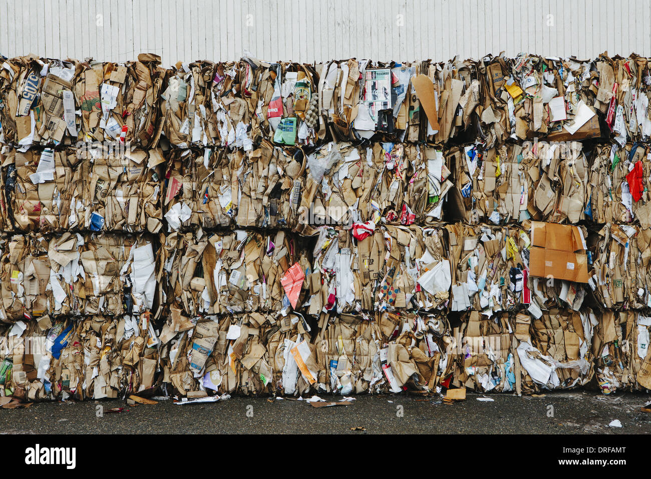 Washington state USA Recycling facility bundles cardboard sorted - Stock Image