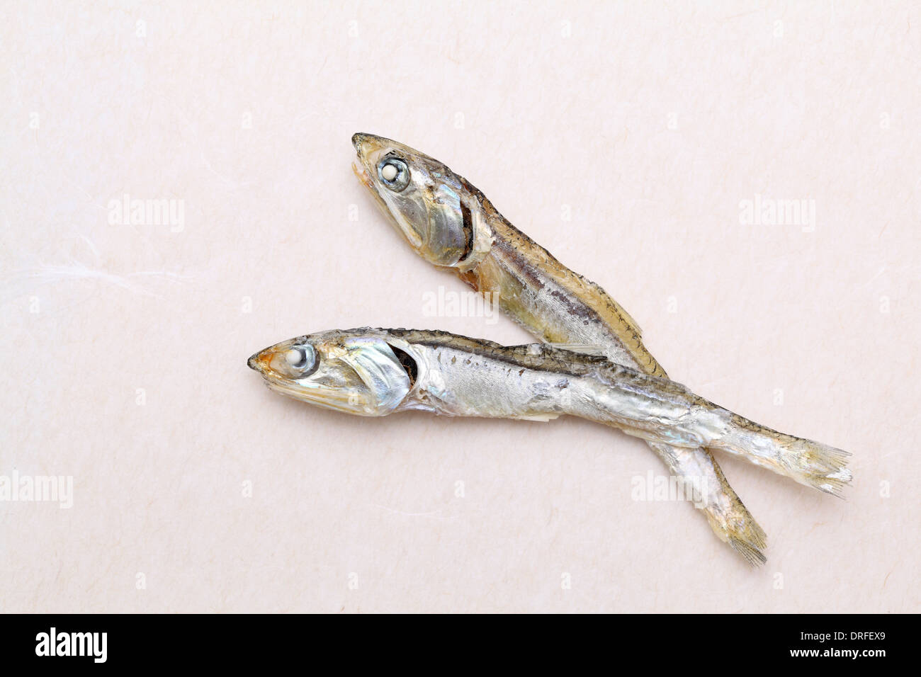 Dried small fish used in japanese cuisine, on japanese paper background - Stock Image