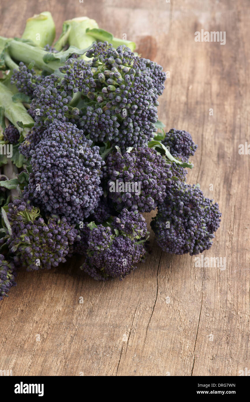 Purple sprouting broccoli a vegetable high in nutrients - Stock Image