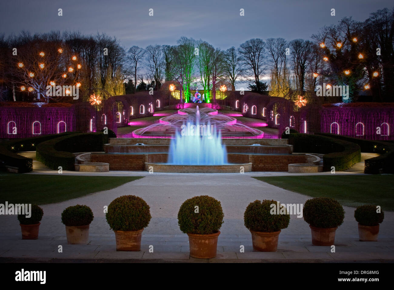The Alnwick Garden in Alnwick, Northumberland floodlit at Christmas time - Stock Image