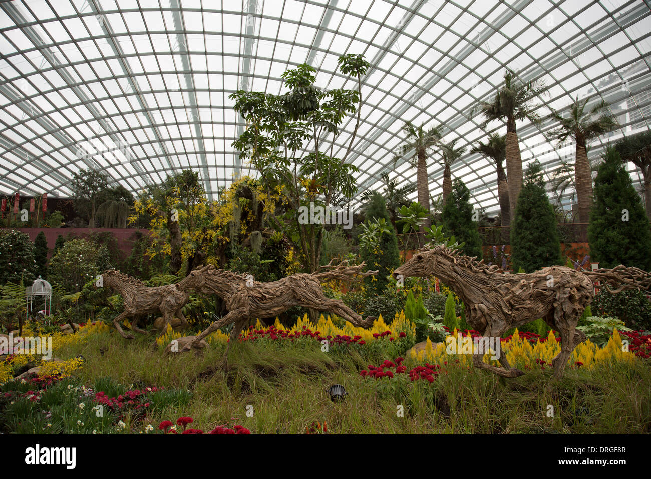 Flowers in the flower dome, The Gardens by the Bay Singapore Stock ...