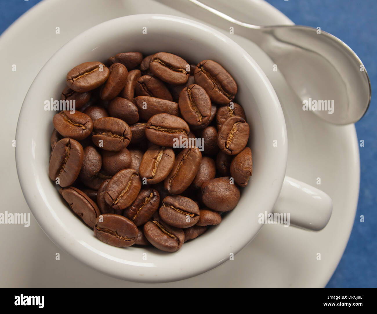 fresh arabica coffee beans in espresso cup / close-up - Stock Image