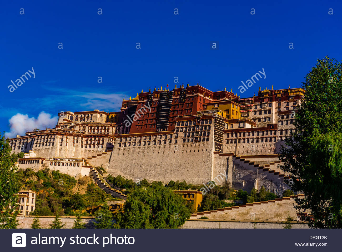 The Potala Palace (a UNESCO World Heritage Site) was the chief residence of the Dalai Lama until the 14th Dalai Lama fled to Dharamsala, India, during the 1959 Tibetan uprising. The massive palace contains 999 rooms. Lhasa, Tibet, China. - Stock Image