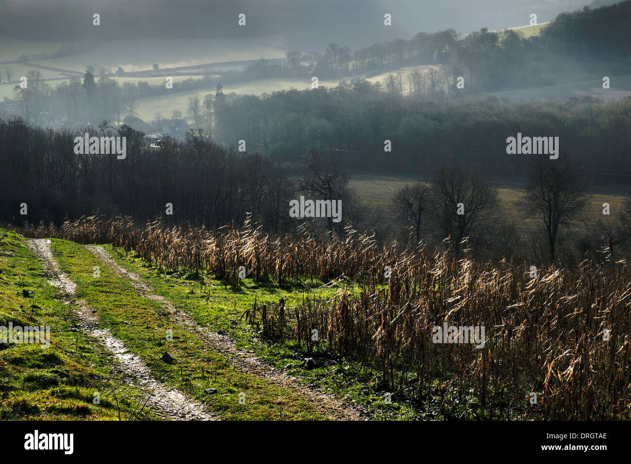 An atmospheric view of Hambleden Valley within Chilterns countryside, Bucks, UK. - Stock Image