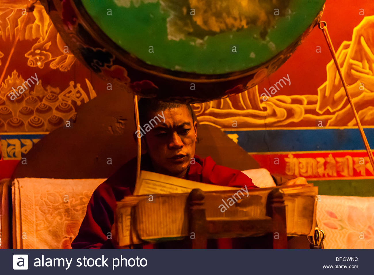 Buddhist monk drumming, Tsurphu Monastery, Gurum, Doilungdeqen County, Tibet (Xizang, China). - Stock Image