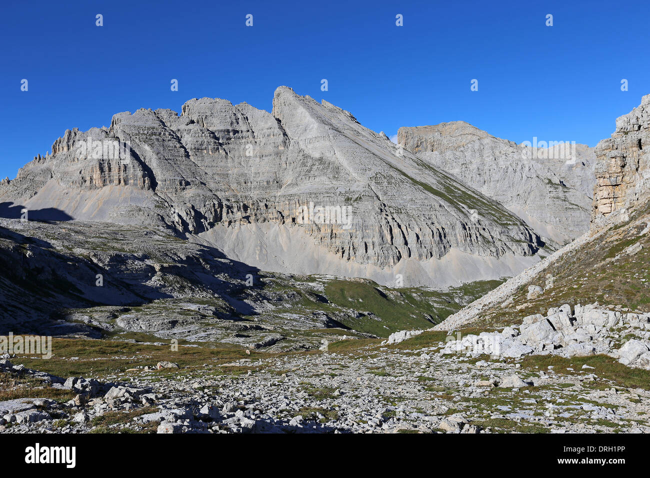 The Latemar massif. The Dolomites. - Stock Image