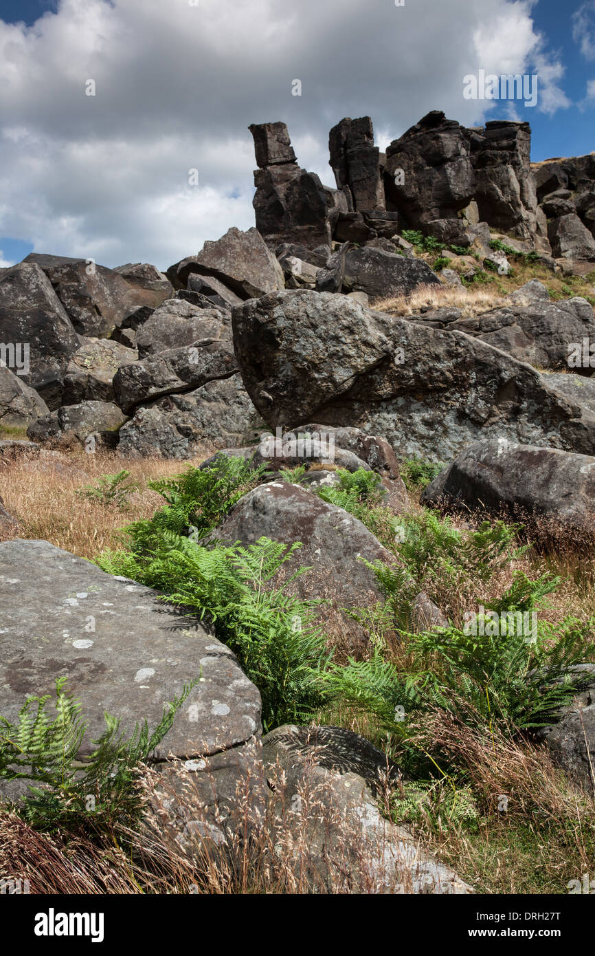 The Wainstones on Hasty Bank, North Yorkshire, England - Stock Image