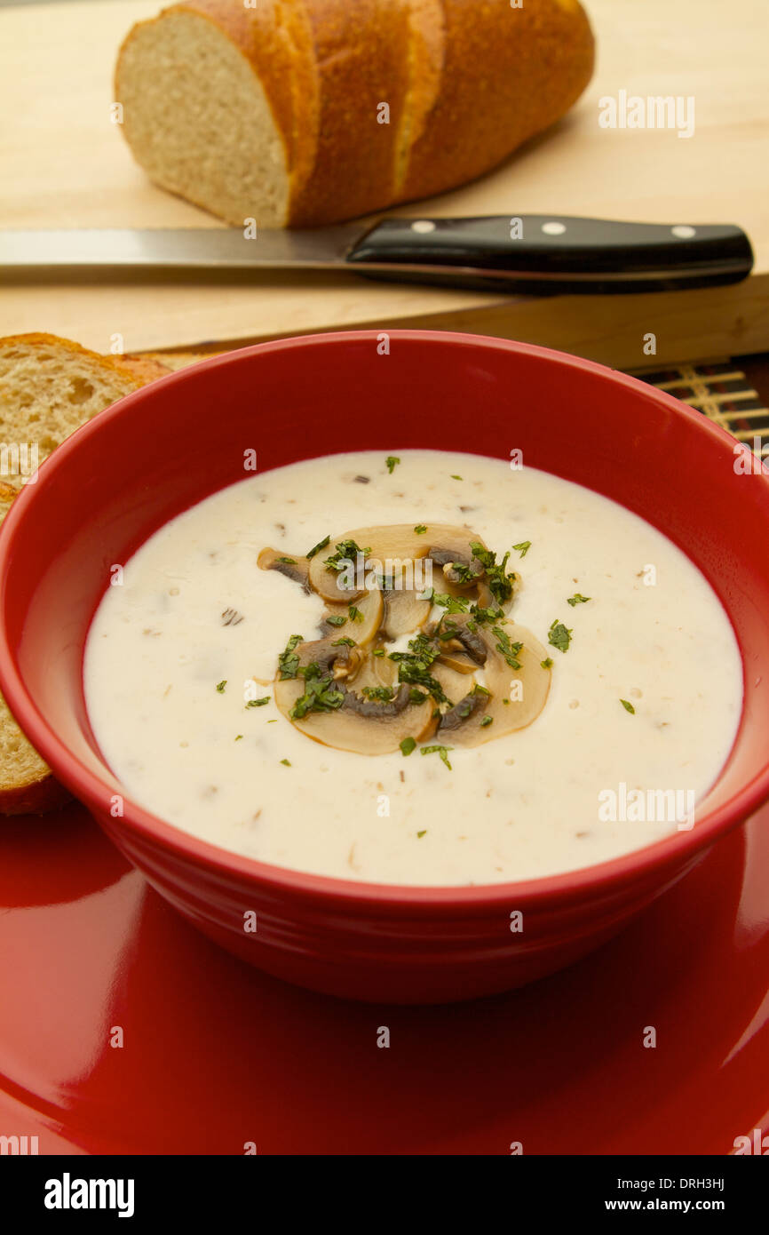 cream of Mushroom soup in a red bowl on a red plate garnished with sliced mushrooms Stock Photo