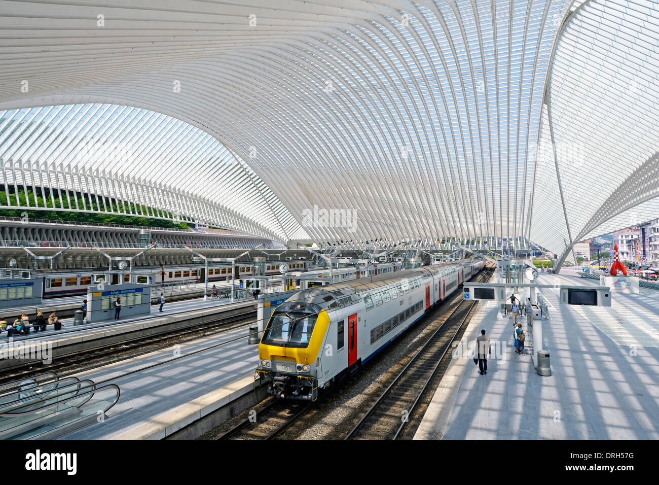 Belgium Liege Guillemins railway station by architect Santiago Calatrava unusual glass curved roof in modern building  train at train station platform - Stock Image