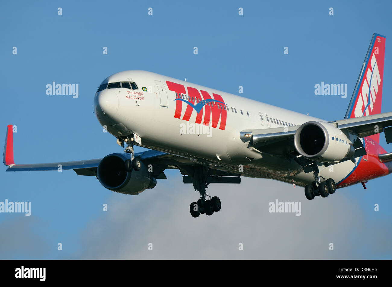 TAM Airlines is the Brazilian brand of LATAM Airlines Group. LATAM Boeing 767 PT-MSS landing at London Heathrow Airport. The magic red carpet slogan - Stock Image
