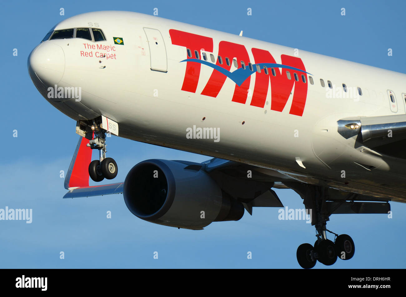 TAM Airlines is the Brazilian brand of LATAM Airlines Group.767 PT-MSS pictured here is landing at London Heathrow. The magic red carpet - Stock Image
