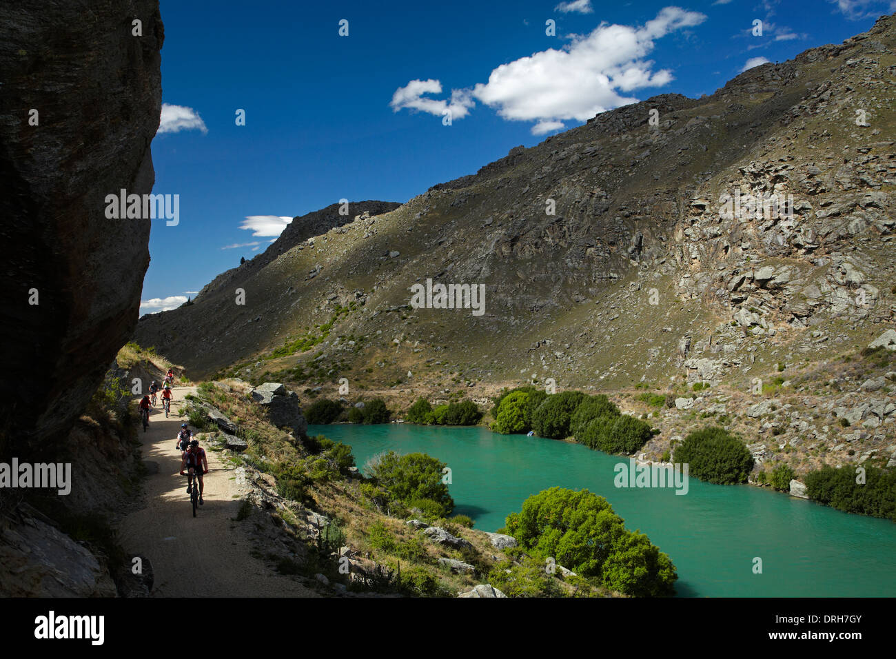 Mountain bikers and Lake Roxburgh on Roxburgh Gorge Cycle and Walking Track, Central Otago, South Island, New Zealand - Stock Image