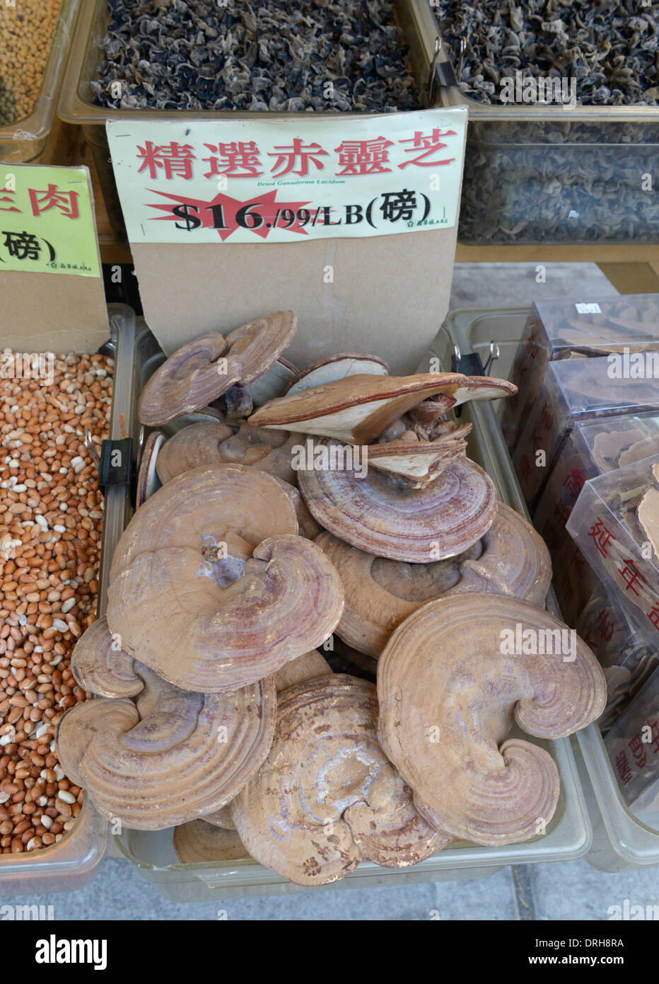 Dried fungus for sale, Chinese market, Chinatown - Stock Image
