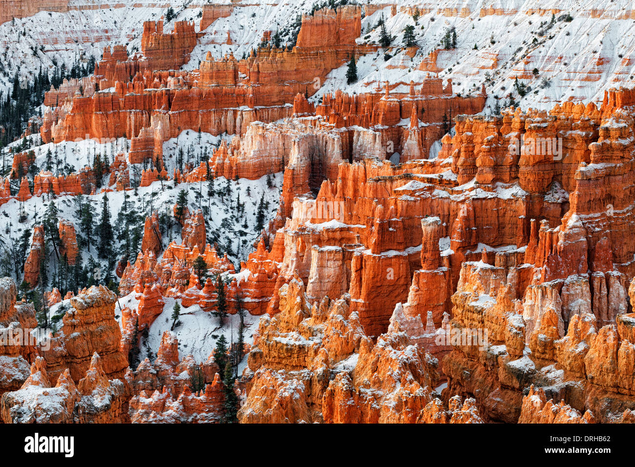 Autumn glow of first light on the snow dusted hoodoos in Utah's Bryce Canyon National Park. - Stock Image