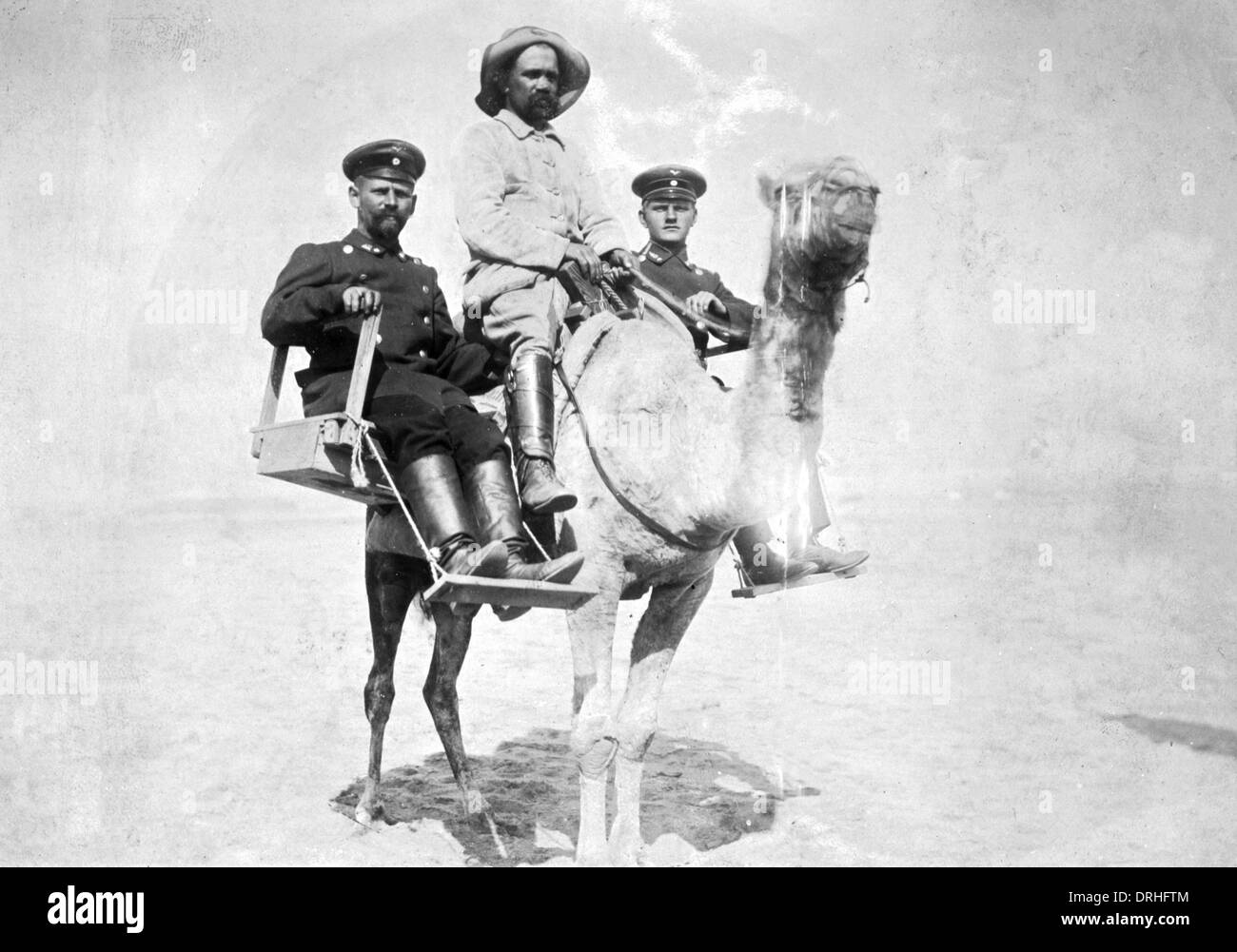 German soldiers on a camel, South West Africa, WW1 - Stock Image