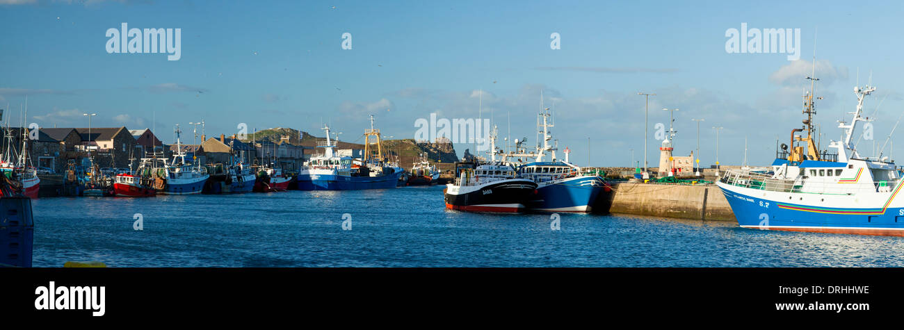 Fishing trawlers in Howth harbour, County Dublin, Ireland. - Stock Image