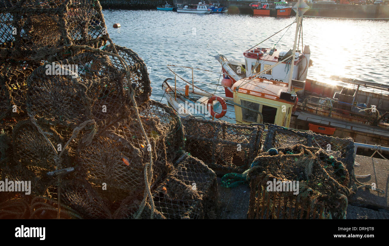 Fishing boats and lobster pots in Howth harbour, County Dublin, Ireland. - Stock Image