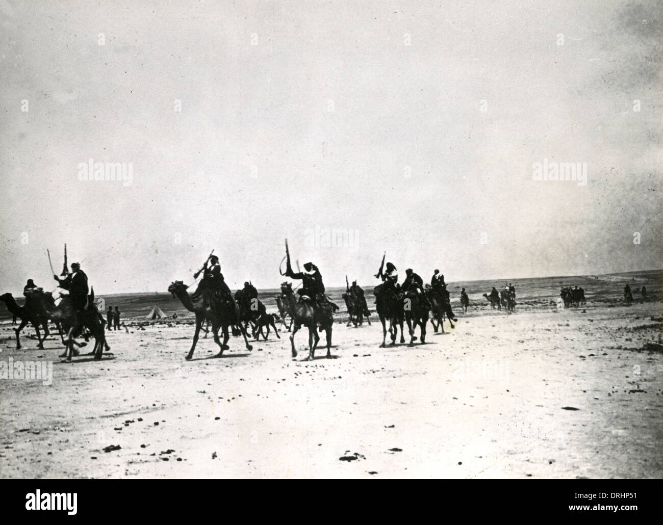Arabs riding camels in the desert, Palestine, WW1 Stock Photo