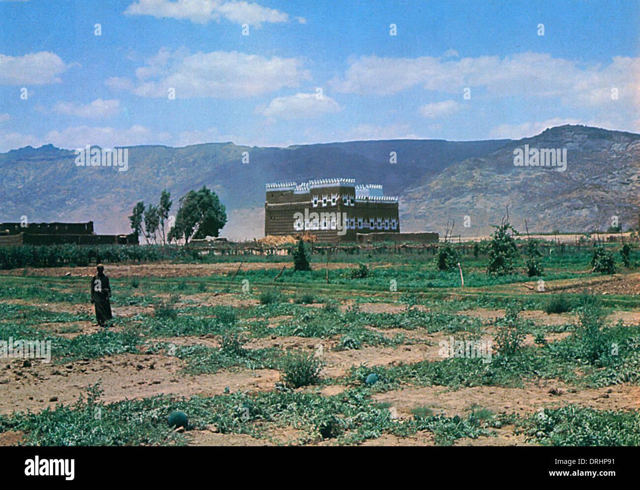 Saudi Arabia - A Farm in Wadi Najran - Stock Image