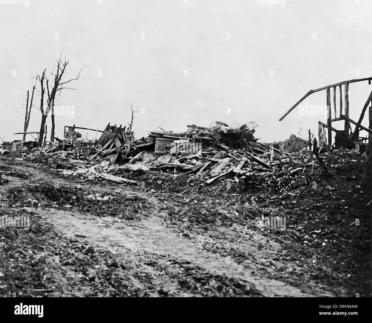 Scene of desolation on the Somme, Western Front, WW1 - Stock Image