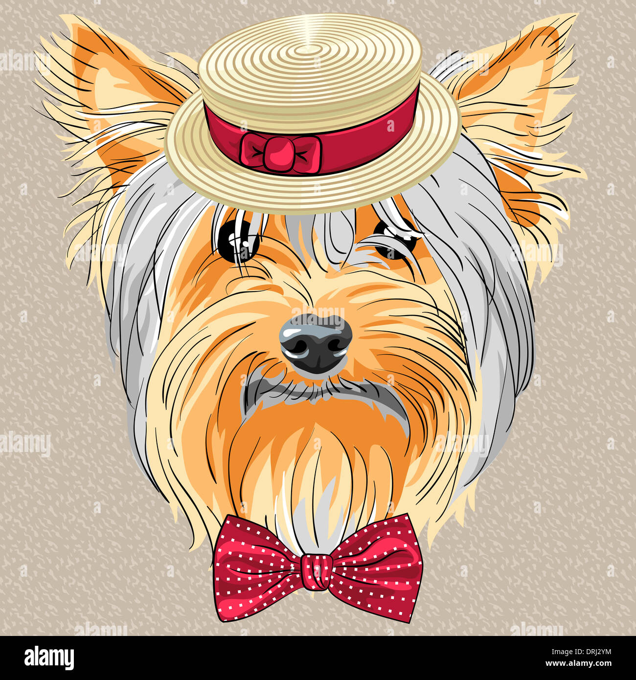 hipster dog Yorkshire Terrier breed in a Straw boater and bow tie - Stock Image